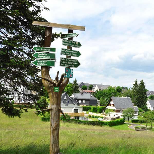 Wanderweg bei Masserberg - Alpakas am Rennsteig, Thüringer Wald